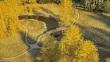 autumnwalk1d1920