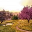 springtimeeve1l1920