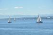 Sommerlicher Konstanzer See