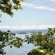 See zwischen Sommerzweigen