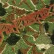 phoenixblumengarten1024x768