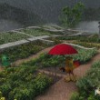 phoenixgarten1200x900