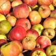 Äpfel von 2013