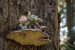Reise in die Erbwälder