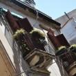 Altstadtfassade