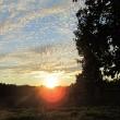 Sonnenuntergang mit Schäfchenwolken