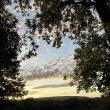 Stille Abendlandschaft