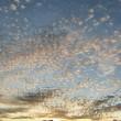 Schäfchenwolkenmeer...