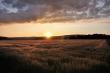 Sonnenuntergang Ende Juni 2014