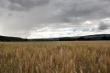 Schweres Wetter Ende Juni 2014 Nr. 2