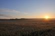 Sonnenaufgang am 1. Juli 2014
