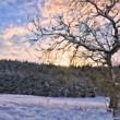 winterpastell4_1024