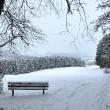 Bänkli im Schnee