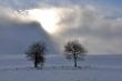 Winter gegen Sonne
