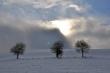 Winter gegen Sonne II