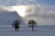 Winter gegen Sonne III