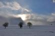 Winter gegen Sonne V