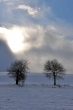 Winter gegen Sonne VI