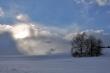 Winter gegen Sonne VII