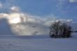 Winter gegen Sonne IX