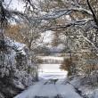 Richtung Lauchringen im Winter