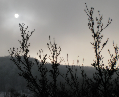 Falb blinzelt durch Sonne durch den Nebel in den Klettgau-Winter.