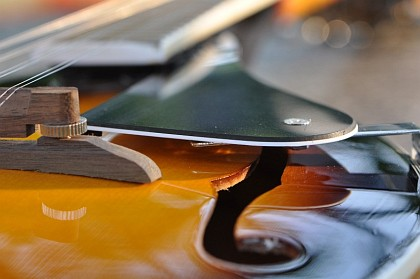 Mandoline, von ganz nahe betrachtet (Foto: Martin Dühning)
