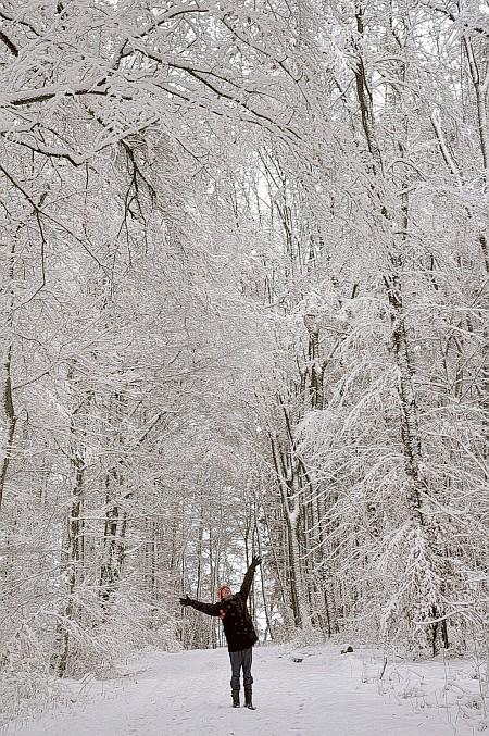 Dreaming of a WHITE CHRISTMAS ? - Dieses Jahr werden Träume Wirklichkeit. (Foto: Hansjörg Dühning)