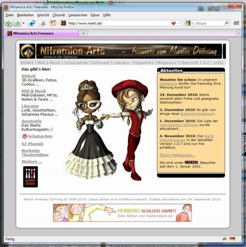 Die Niarts-Webseite am 1. Januar 2011 - durchschnittlich 35,74383561643836 Besucher pro Tag konnte sie in den letzten 10 Jahren verbuchen. Da war sie schon 4 Jahre alt.