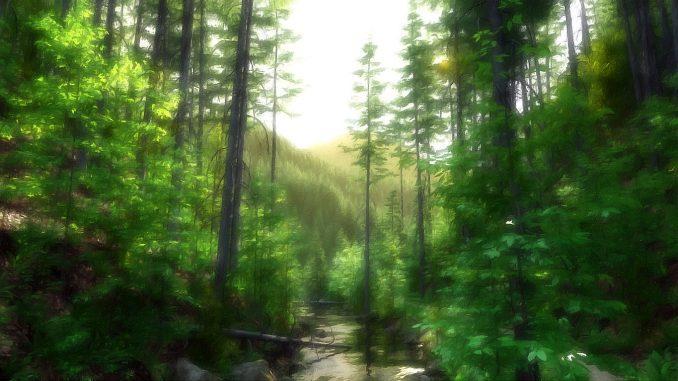 Gemalte Wildnis von Soltane - sie basiert auf der gleichen Szene wie oben, wurde aber noch mit virtuellen Pinseln nachbearbeitet.