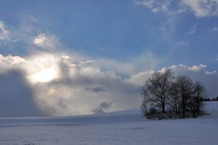 Die Sonne setzt sich langsam gegen den Schneesturm durch. Bäume warten ab. (Foto: Martin Dühning)