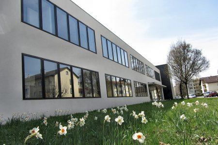 Auch am Klettgau-Gymnasium blühen die Narzissen - Nachkommen längst vergessener Blumenzwiebelspendeaktionen der Fachschaft Religion (Foto: Martin Dühning).