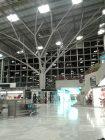Nachts im Flughafen