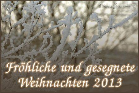 Nitramica Arts wünscht frohe Weihnachten 2013!