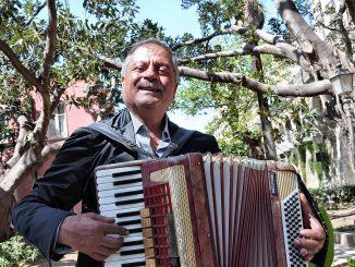 Ein sizilianischer Musiker bringt in einem Park mit südamerikanischen Gummibäumen ein persönliches Akkordeonständchen dar. (Foto: Martin Dühning)