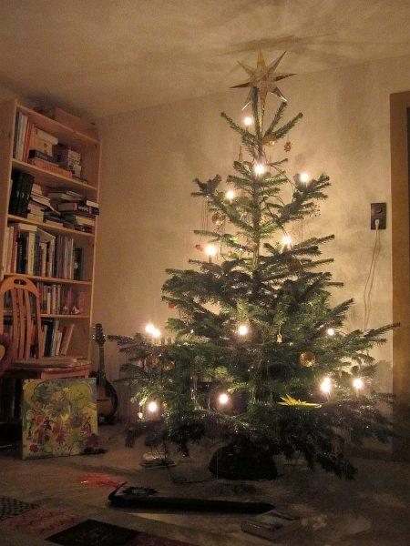 2014 gab es nach 22 baumlosen Jahren auch erstmals wieder einen eigenen Christbaum. (Foto: Martin Dühning)
