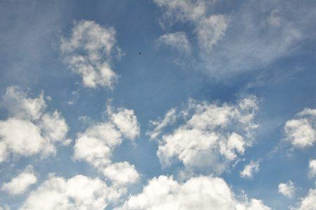 Blauer Himmel - und das mitten im Mittwinter! (Foto: Martin Dühning)