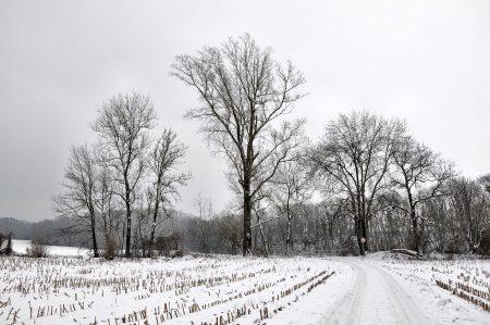 Verschneites Oberlauchringen bei der Mühlegrabenbrücke Richtung Galgenbuck am 1. Januar 2015. (Foto: Martin Dühning)