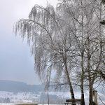 Winterbilder 2014-2015