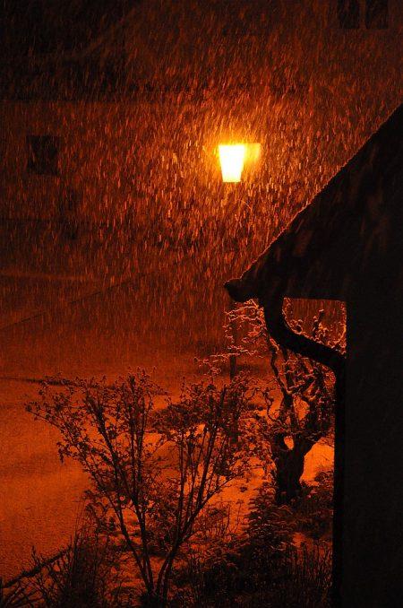 Nächtlicher Schneefall Anfang Februar (Foto: Martin Dühning)