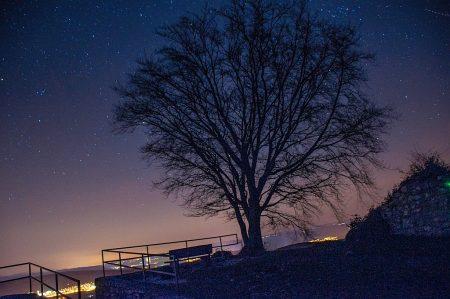 Filigranes Geäst vor dem Sternenzelt des Klettgaus, unten leuchten die Siedlungen (Foto: Martin Dühning).