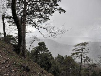 Seelenlandschaft: Der Klettgau zeigte sich am Ostersonntag düster, dezembrig und schaurig einsam. (Foto: Martin Dühning)