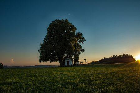 Sonnenuntergang am 30. August 2015 (Foto: Martin Dühning)