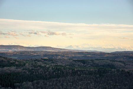 Alpen von der Küssaburg aus betrachtet (Foto: Salome Leinarkunion)