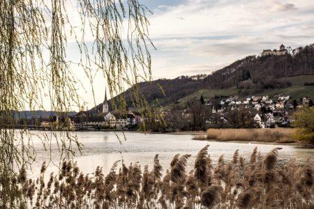 Dafür entlohnt Werd mit einem malerischen Ausblick ins benachbarte Stein am Rhein. (Foto: Martin Dühning)