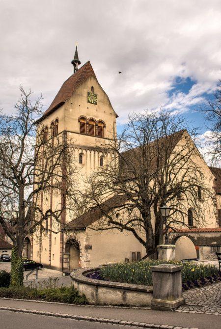 Hauptturm von Mittelzell mit Turmfalke (Foto: Martin Dühning)