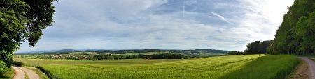 Grünes Panorama vom Eichberg Richtung Dettighofen (Foto: Martin Dühning)