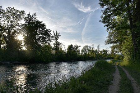 Uferweg am Hochrhein bei Rheinheim (Foto: Martin Dühning)