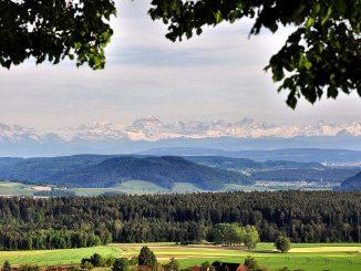 Alpensicht bei Baltersweil (Foto: Salome Leinarkunion)