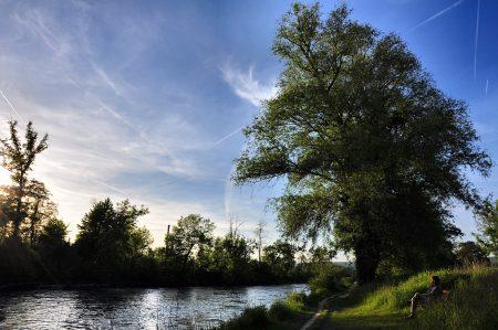 Am abendlichen Ufer (Foto: Salome Leinarkunion)